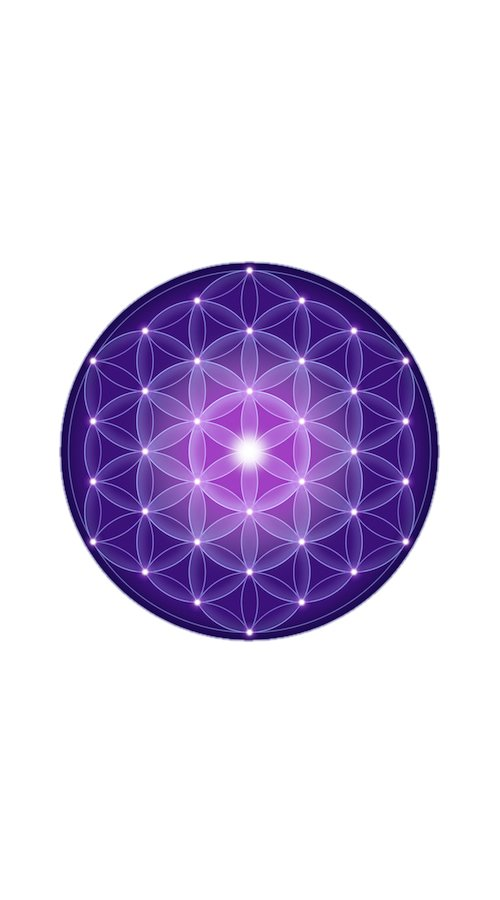 amethyst flower of life image